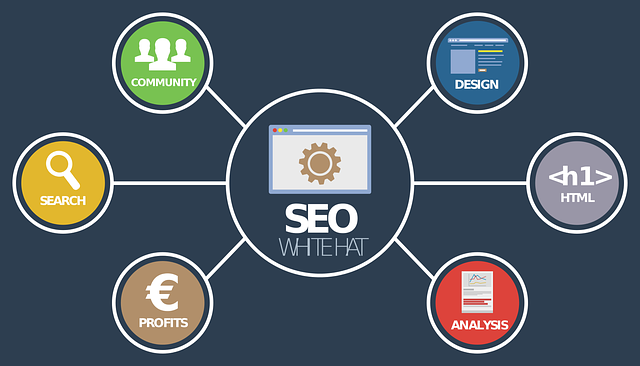 Seo optimalistatie Vries